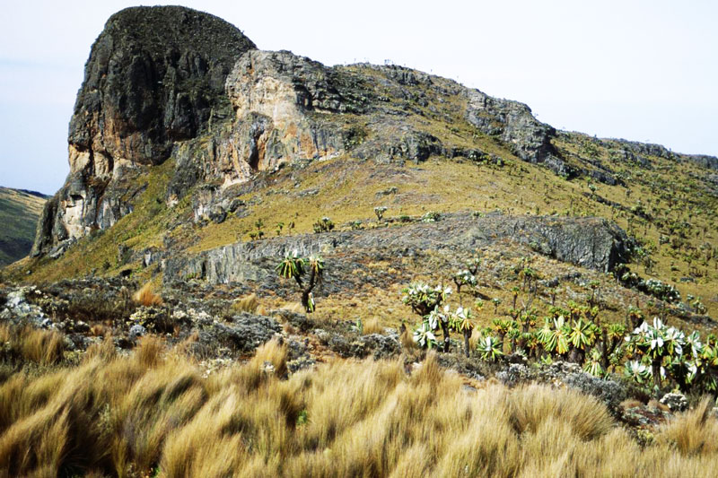 Elgon volcanic base